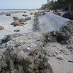 Perubahan Pantai Durjela Dobo