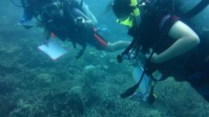 Pegambilan Data Bawah Air