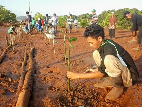 Penanaman Mangrove di Timbunan Lumpur Tambang Hakatutobu