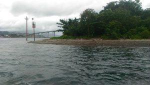 Tanjung Martha Alfons